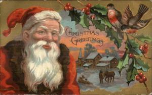 Christmas - Close-Up Santa Claus Face Gold Border w/ Birds c1910 Postcard