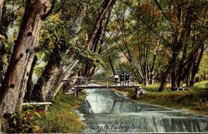 Pennsylvania Harrisburg Scene In Paxtang Park 1907