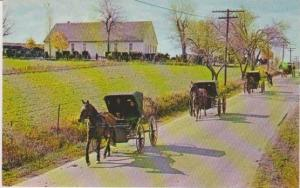 Old Order Mennonite Horse Drawn Carriages Leaving the Meeting House, Pennslyv...