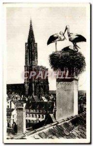 Old Postcard Strasbourg The Storks