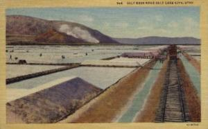 Salt Beds -ut_salt_lake_city_00