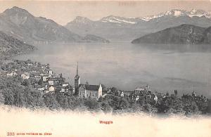 Switzerland Old Vintage Antique Post Card Weggis Unused