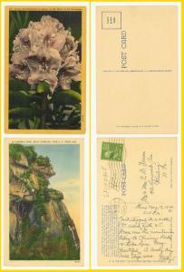2 North Carolina Linen- Caesar's Head & Flowers - 1940