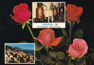 Grasse Fragonard Parfumerie Rose Perfume Machine French Postcard