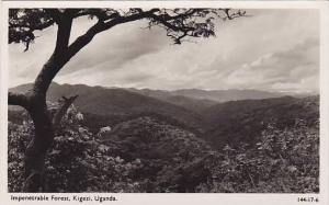 RP: Uganda (Congo), 30-40s , Forest , KIGEZI