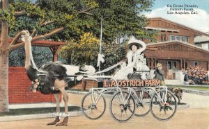 On Dress Parade OSTRICH FARM Los Angeles CA Ostrich Cart c1910s Vintage Postcard