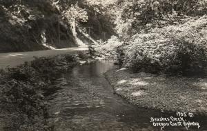 RP: OREGON Coast Highway, 30-40s ; Brushes Creek