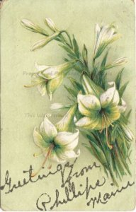 White Day Lilies on a Pale Lime Green Background Silver Glitter spell a Greeting