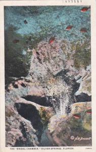 Florida Silver Springs The Bridal Chamber 1928