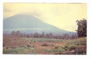 Le sombre volcan MUHABURA , Rwanda , 40-60s