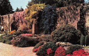 BR66539 the savill garden windsor great park   uk  14x9cm