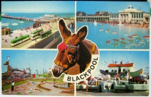 England Blackpool North Pier South Shore etc - unposted