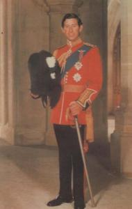 Prince Charles Colonel Of The Wales Welsh Guards Uniform Wedding Royal Postcard