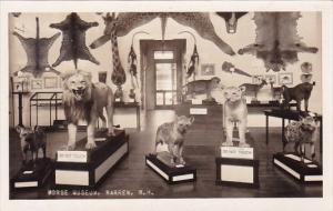 Morse Museum Warren New Hampshire
