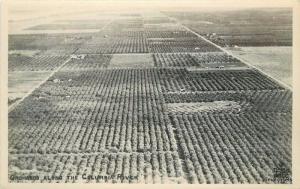 1930s Oregon Washington Farming Agriculture RPPC real photo postcard 13038