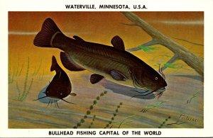Minnesota Waterville Bullhead Fishing Capitol Of The World