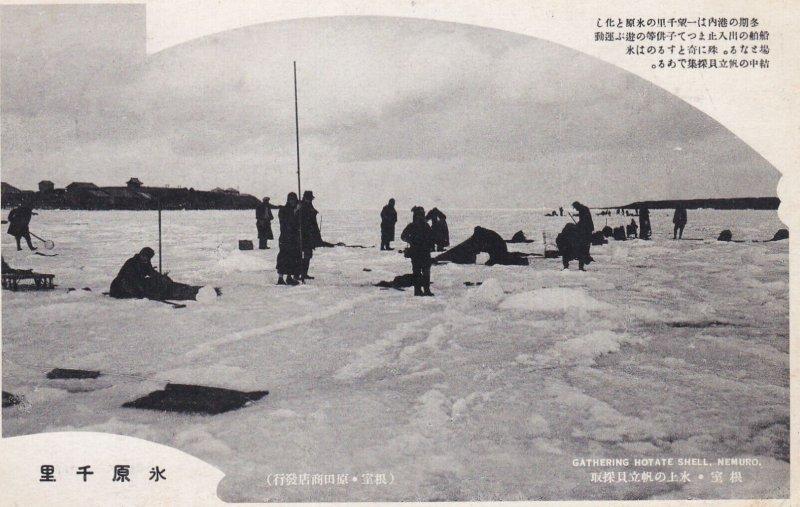 Nemuro , Hokkaido, Japan , 00-10s ; Gathering Hotate Shell Thru ice
