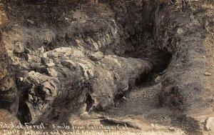LP01 Calistoga  California Postcard RPPC Petrified Forest
