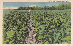 492 A Southern Tobacco Field Asheville North Carolina Curteiclh