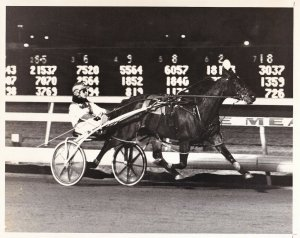 MEADOWLANDS RACETRACK Harness Horse Race, STARDRIFT HANOVER Wins Race, 1986