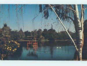 Unused Pre-1980 PARK SCENE Fresno California CA hk5921