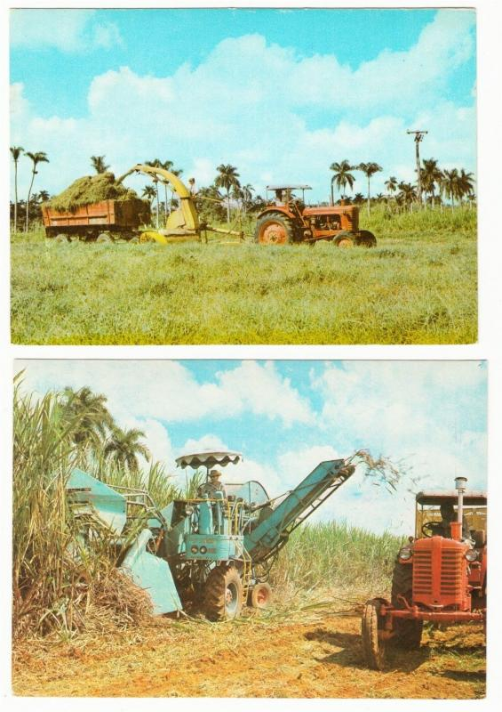 Cuba Farm Agriculture Harvesting Hay and Sugar Lot of 2 Postcards