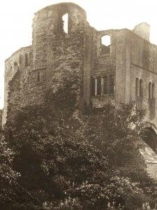 Castle Tower and Gardens Newark S3047 Vintage Postcard