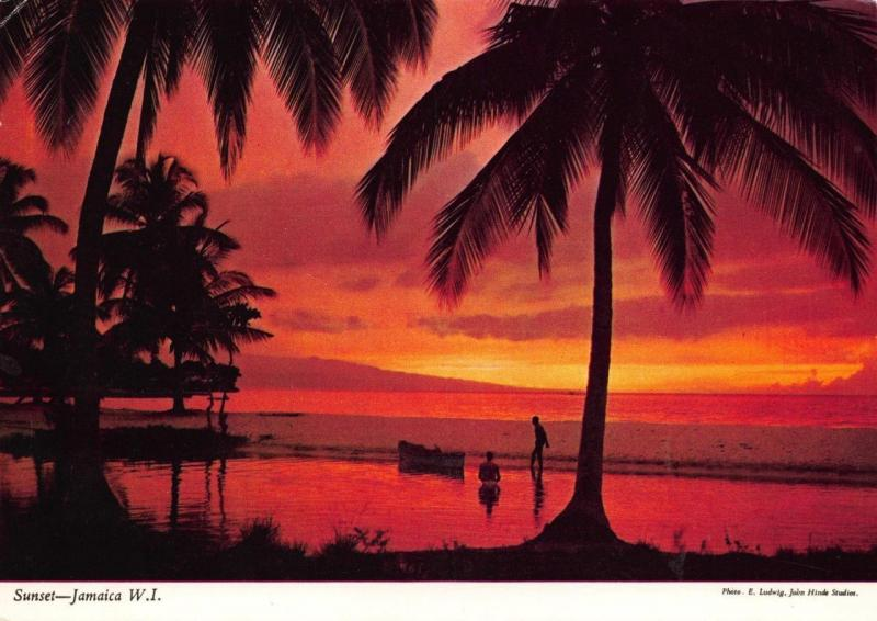 Postcard Sunset JAMAICA Palm Trees West Indies