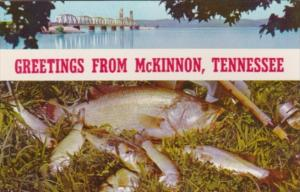 Greetings From McKinnon Tennessee