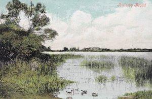 Rollesby Broad Norfolk Broads Old Postcard