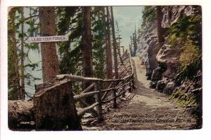 Along Glacier Trail, Mirror Lake to Lake Louise, Alberta, 'Lead Your Ponies' ...