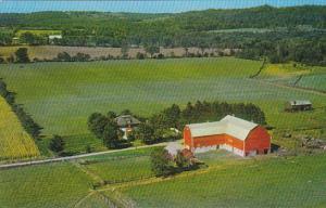 Canada Ruth Dale Farms Ida Ontario