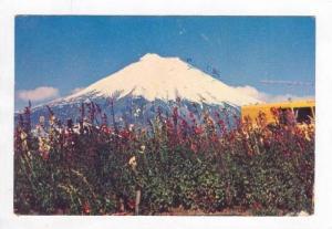 Mt Cotopaxi, Ecuador, PU 1980s