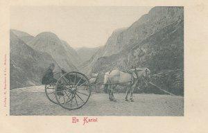 En Kariol , Norway , 1890s