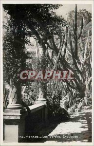 Modern Postcard Monaco Exotic Gardens