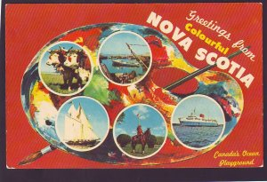 P1407 vintage unused postcard nova scotia canada multi view artist view