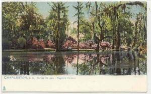 Charleston, South Carolina, 00-10s ; Across the lake-Magnolia Gardens, TUCK #...
