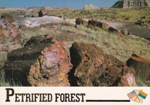 Arizona Petrified Forest National Monument