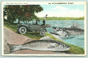 The Way We Catch Them at Stanbridge East PQ~Exaggerated Fish~Reel In With Car