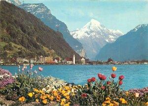 Switzerland Postcard Flulen am Vierwaldstattersee mit Bristenstock
