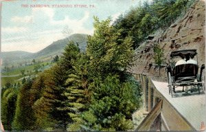 Standing Stone- PA~Buggy Reaches The End of the Line @ Narrows~1909 PC