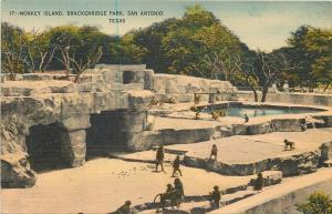San Antonio Texas~Brackenridge Park~Monkey Island~1940s Postcard
