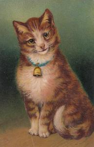 PFB Serie 7072 ; Cat Portrait , 00-10s