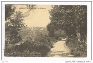 YZERON (Rhone)- Le Pic d'Yzerdon, Pu-1908 France
