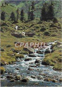 Modern Postcard Mountain Stream