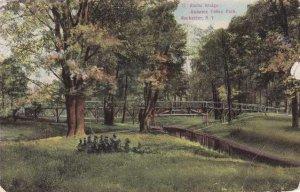 Genesee Valley Park, Rochester, New York - Rustic Bridge - pm 1909 - DB