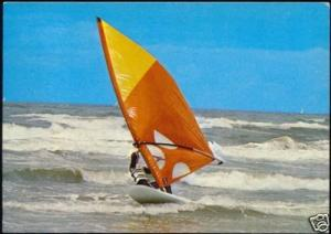 Wind SURFING, Surf Board, Surfer, Sports