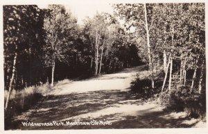 Michigan Mackinaw City Wilderness Park Road Scene Real Photo