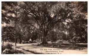 New Jersey Ho-ho-kus Old Elm Tree  Franklin Turnpike