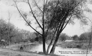 Owosso-Corunna Michigan~Shiawassee River Scene~Man on Shore~Hat Next to Him~1911